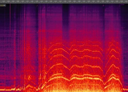 Welcher Lärm tritt wo auf ( Frequenzanalyse)